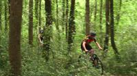 Holidays with E-Bike and tours with e bikes in Tuscany