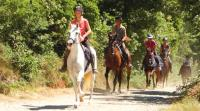 Horse riding tours in Tuscany