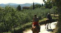 Horse Riding in Tuscany Italy