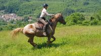 Equestrian Vacations in Tuscany